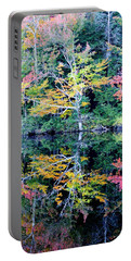 Vivid Fall Reflection Portable Battery Charger
