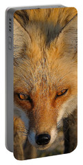 Vixen Portable Battery Charger