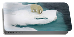 Waiting For Seal Portable Battery Charger