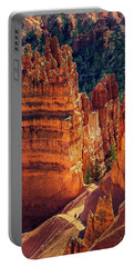 Portable Battery Charger featuring the photograph Walking Among Giants by John Hight
