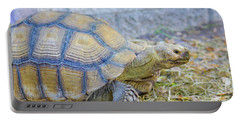 Portable Battery Charger featuring the photograph Walking Turtle by Raphael Lopez