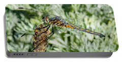 Warming-up - Darner Dragonfly Portable Battery Charger