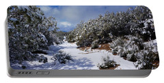 Warner Springs Snow Portable Battery Charger