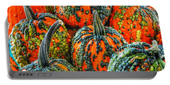 Warty Pumkins  Portable Battery Charger
