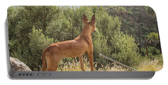 Watchful Dog Portable Battery Charger by Patricia Hofmeester