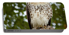 Watchful Eye Portable Battery Charger by Jim Gillen