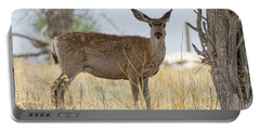 Watching From The Woods Portable Battery Charger by James BO Insogna