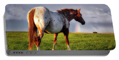 Watching The Rainbow Portable Battery Charger