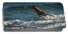 Water Dog Delray Beach Florida Portable Battery Charger