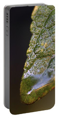 Portable Battery Charger featuring the photograph Water Droplet V by Richard Rizzo