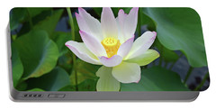 Water Lily No. 3-1 Portable Battery Charger