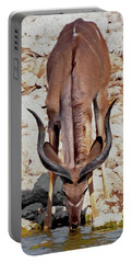 Portable Battery Charger featuring the digital art Waterhole Kudu by Ernie Echols