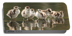 We Are Family - Seven Egytean Goslings In A Row Portable Battery Charger