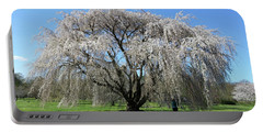 Portable Battery Charger featuring the photograph Weeping Cheery In Full Bloom by Liza Eckardt