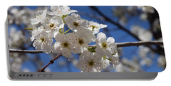 Welcome Colorado Spring Portable Battery Charger
