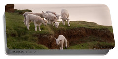 Welsh Lambs Portable Battery Charger