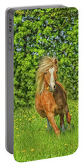 Welsh Pony Portable Battery Charger