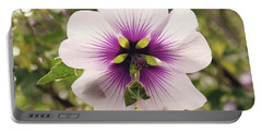 Western Australian Native Hibiscus Portable Battery Charger