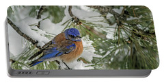 Western Bluebird In A Snowy Pine Portable Battery Charger