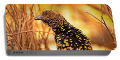 Western Bowerbird Portable Battery Charger