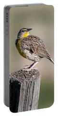 Portable Battery Charger featuring the photograph Western Meadowlark by Gary Lengyel