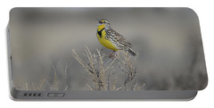 Western Meadowlark Portable Battery Charger
