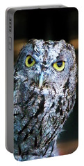 Portable Battery Charger featuring the photograph Western Screech Owl by Anthony Jones