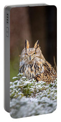 Western Siberian Owl Portable Battery Charger