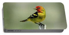 Western Tanager At The Ranch Portable Battery Charger