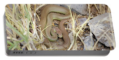 Western Yellow-bellied Racer, Coluber Constrictor Portable Battery Charger