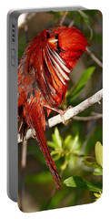Wet Cardinal Portable Battery Charger