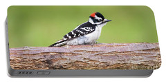 Portable Battery Charger featuring the photograph Wet Downy Woodpecker  by Ricky L Jones