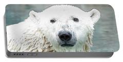 Wet Polar Bear Portable Battery Charger
