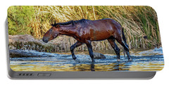 Wet Wild Horse Walking In Salt River Portable Battery Charger