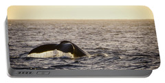 Whale Fluke Portable Battery Charger