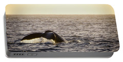 Whale Fluke Portable Battery Charger