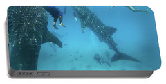 Whale Sharks Portable Battery Charger by Tim Fitzharris