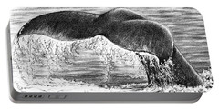 Portable Battery Charger featuring the drawing Whale Tail by Heidi Kriel