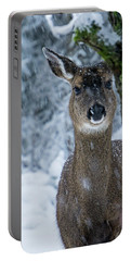 Portable Battery Charger featuring the photograph What Is This - 365-280 by Inge Riis McDonald