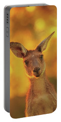 What's Up, Yanchep National Park Portable Battery Charger