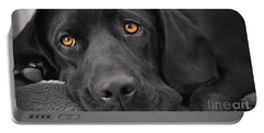 When Dogs Die Portable Battery Charger