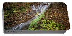 Portable Battery Charger featuring the photograph When The Leaves Fall by Dale Kincaid