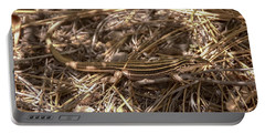 Whiptail Lizard Portable Battery Charger