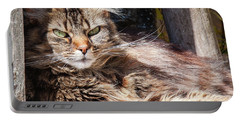 Portable Battery Charger featuring the photograph Whiskers by Geoff Smith