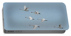 Whistling Swan In Flight Portable Battery Charger