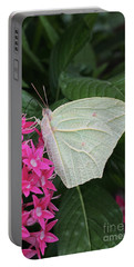 White Angled Sulphur #3 Portable Battery Charger