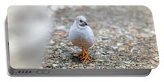 White Bird Sneaking Through Portable Battery Charger