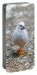 Portable Battery Charger featuring the photograph White Bird Sneaking Through by Raphael Lopez