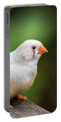 Portable Battery Charger featuring the photograph White Bird Standing On Deck by Raphael Lopez