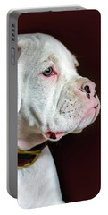 White Boxer Portrait Portable Battery Charger